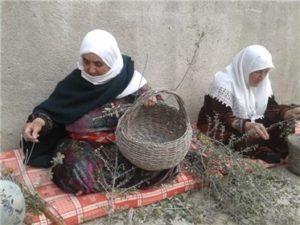 ג'מעין - נשים קולעות סל מסורתי מזית.